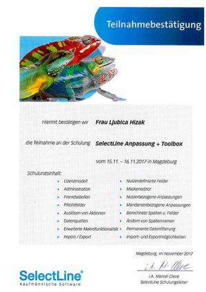 SelectLine Anpassung + Toolbox (11/2017)